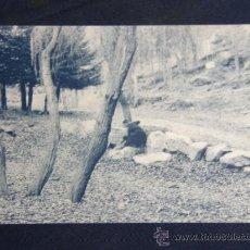 Postales: POSTAL FOTOTIPIA THOMAS BARCELONA SAN LORENZO DE EL ESCORIAL ED TOMÁS MORA SIN CIRCULAR. Lote 37192969