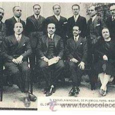 Postales: MADRID ESCUELA NACIONAL PUERICULTURA, DIRECTOR PROFESORES Y AYUDANTES DE LAS SECCIONES, SIN CIRCULAR. Lote 41116425