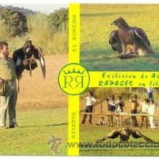 Postales: 72-ESP70. POSTAL MADRID. ALDEA DEL FRESNO. RESERVA EL RINCÓN. SAFARI MADRID. Lote 41579197