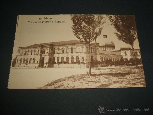 MADRID MUSEO DE HISTORIA NATURAL (Postales - España - Comunidad de Madrid Antigua (hasta 1939))