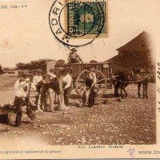 Postales: MADRID.- HISTORIA DEL PAN.- RECOGIENDO Y MIDIENDO EL GRANO.. Lote 45792078