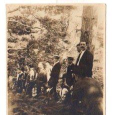 Postales: TARJETA POSTAL MONTES DE CERCEDILLA. AÑO 1919. Lote 47472343