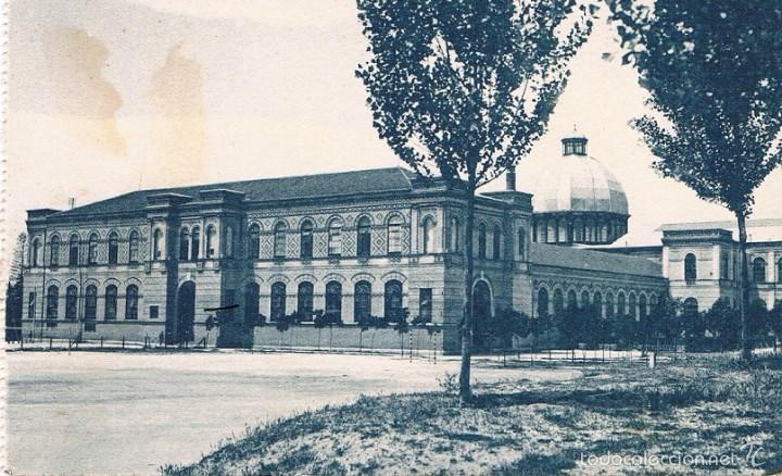 POSTAL MADRID. MUSEO DE HISTORIA NATURAL. GRAFOS. SIN CIRCULAR (Postales - España - Comunidad de Madrid Antigua (hasta 1939))