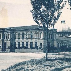 Postales: POSTAL MADRID. MUSEO DE HISTORIA NATURAL. GRAFOS. SIN CIRCULAR. Lote 58718449