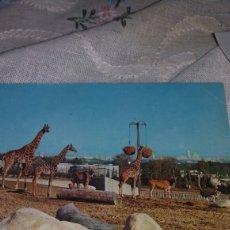 Postales: POSTAL DEL ZOO MADRID 1973. Lote 70569837