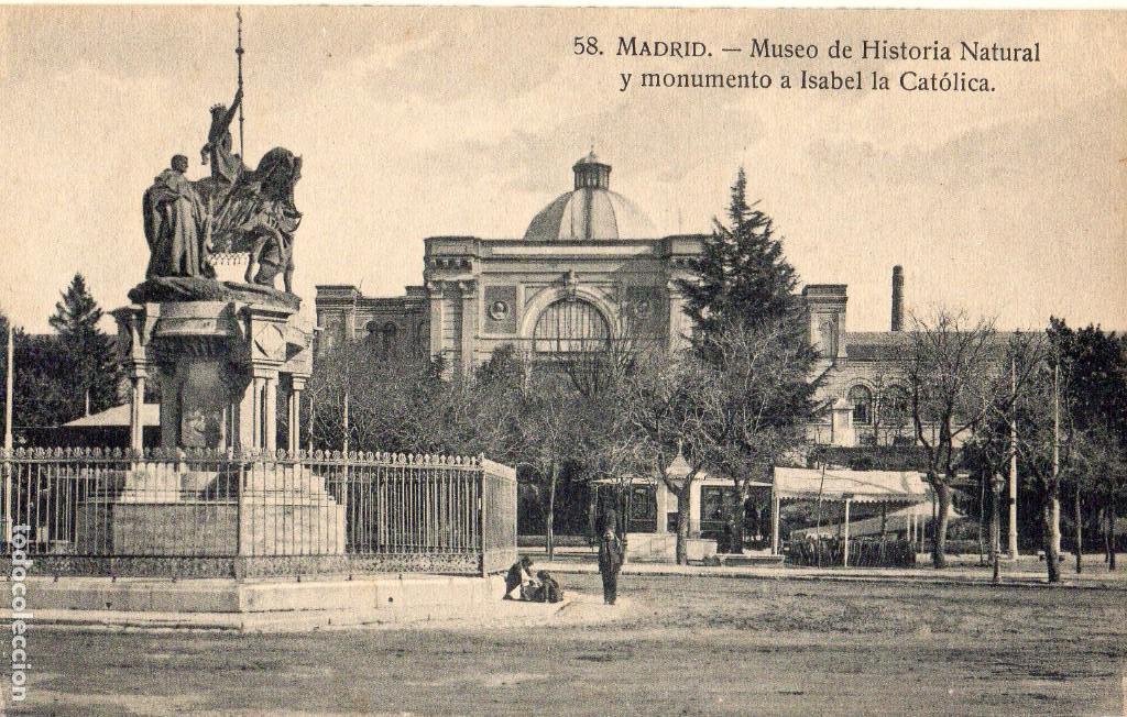 MADRID.- MUSEO DE HISTORIA NATURAL, SIN CIRCULAR. FTO.H.A.E,JMOLINA1946 (Postales - España - Comunidad de Madrid Antigua (hasta 1939))