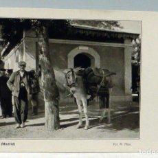 Postales: POSTAL MADRID PINTO PAISANO CON BURRO FOT PR PILAR FRANZ BÖHAM S KUNSTVERLAG SIN CIRCULAR. Lote 110877507