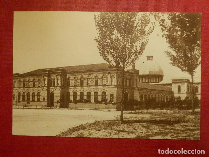 POSTAL - ESPAÑA - MADRID - 42.- MUSEO DE HISTORIA NATURAL - GRAFOS - SIN CIRCULAR (Postales - España - Comunidad de Madrid Antigua (hasta 1939))
