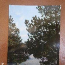 Postales: POSTAL EL ESCORIAL, MONASTERIO VISTA GENERAL. Lote 120111659