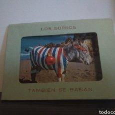 Postales: ÁLBUM DE 10 POSTALES LOS BURROS TAMBIÉN SE BAÑAN .DOMÍNGUEZ MADRID. Lote 126395663