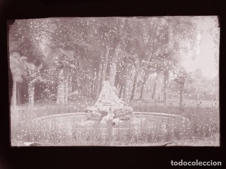 Postales: ARANJUEZ, MADRID - 5 CLICHES ORIGINALES - NEGATIVO EN CELULOIDE - ED. ARRIBAS - Foto 7 - 130248194