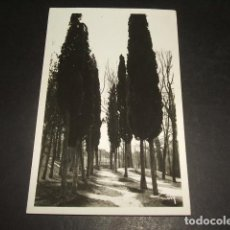 Postales: MADRID LA MONCLOA AVENIDA DE LOS CIPRESES COL. LOTY POSTAL FOTOGRAFICA. Lote 132181598