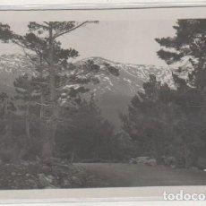 Postales: LOTY 0603 SIERRA DE GUADARRAMA. PUERTO DE LOS COTOS. POSTAL FOTOGRÁFICA. . Lote 134757690