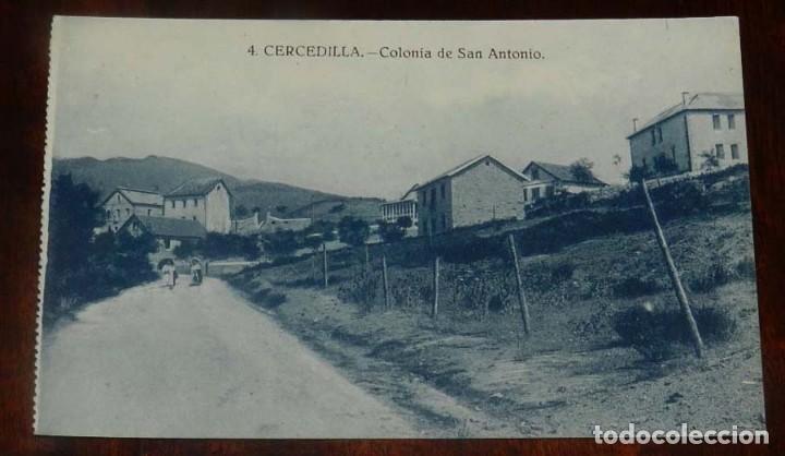 POSTAL DE CERCEDILLA (MADRID). COLONIA DE SAN ANTONIO. NUM.4. ED. BAZAR DE CERCEDILLA. NO CIRCULADA. (Postales - España - Comunidad de Madrid Antigua (hasta 1939))