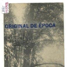 Postales: (PS-59571)POSTAL CASTILLO DE FROHSDORF-PUESTO DE CAZA EN EL BOSQUE. Lote 152187302