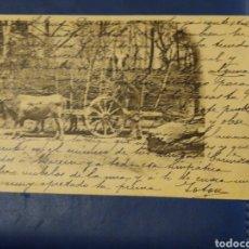Postales: POSTAL COLECCIÓN CÁNOVAS SERIE DE NÚMERO 10. CARGANDO LEÑA.. Lote 176975019