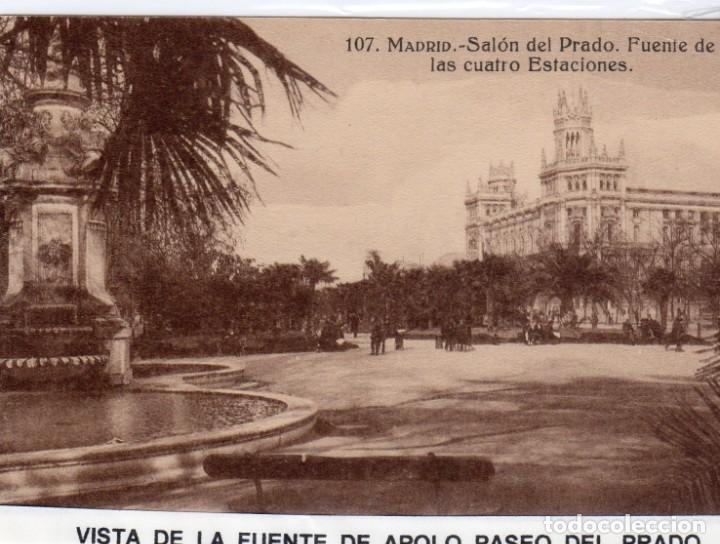 MADRID.- FUENTE DE APOLO,SIN CIRCULAR, DIVIDIDA, EDC, GRAFOS ,JMOLINA1946 (Postales - España - Comunidad de Madrid Antigua (hasta 1939))