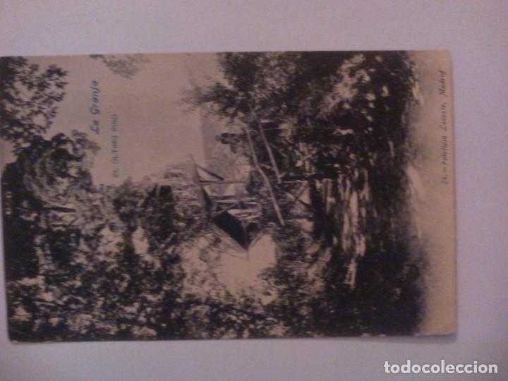 """POSTAL DE MADRID. """"LA GRANJA. EL ÚLTIMO PINO"""" (Postales - España - Comunidad de Madrid Antigua (hasta 1939))"""