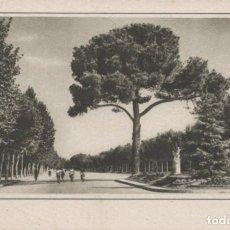 Postales: POSTAL MADRID - PARQUE DEL RETIRO - PASEO DE COCHES 55 - GARRABELLA. Lote 240400120