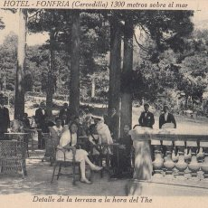 Cartes Postales: MADRID, CERCEDILLA, HOTEL FONFRIA, LA TERRAZA. ED. CASTAÑEIRA ALVAREZ Y LEVENFELD. SIN CIRCULAR. Lote 260411190