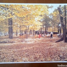 Postales: POSTAL COLECCIÓN MADRID -15. LA CASA DE CAMPO. 1986. SIN CIRCULAR.. Lote 288611713