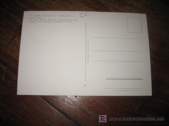 Postales: ELCHE HUERTO DEL CURA ARQUITECTURA DE LOS MEDIOS TRONCOS - Foto 2 - 7479166