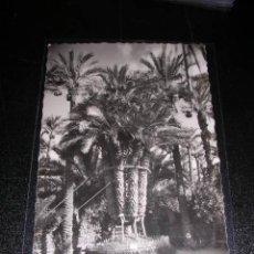 Postales: 17 ELCHE, HUERTO DEL CURA, PALMERA IMPERIAL. Lote 9443015
