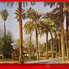 Postales: VALENCIA - AVDA. DEL PINTOR PINAZO AÑO 1959. Lote 12562830