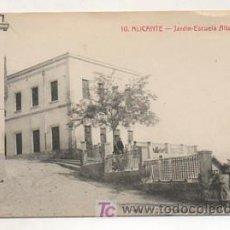 Postales: ALICANTE. JARDÍN ESCUELA ALTAMIRA. (CASTAÑEIRA Y ALVAREZ). . Lote 13062481