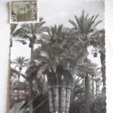 Postales: ELCHE. Nª 29 HUERTO DEL CURA. LA PALMERA IMPERIAL. ED. G. GARRABELLA. ESCRITA. Lote 26165065