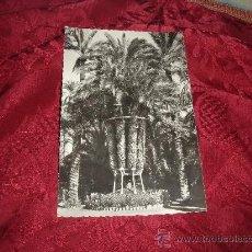 Postales: ELCHE HUERTO DEL CURA PALMERA IMPERIAL,VENTA EXCLUSIVA EL HUERTO EDICIONES GARCIA GARRABELLA. Lote 13910199