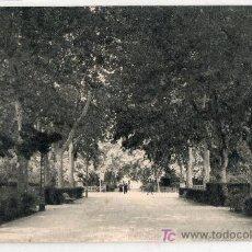 Postales: TARJETA POSTAL DE CASTELLON. PASEO DE RIBALTA. EDICIONES GAVI. F. MESAS ARTE BILBAO. Lote 16932916