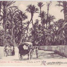 Postales: ELCHE (ALICANTE): CAMINO DE LOS MOLINOS. LAMPISTERIA ANTÓN/FOTO JOSÉ PICÓ. REVERSO SIN DIVIDIR(1905). Lote 25114876
