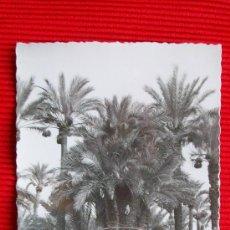 Postales: ELCHE - ALICANTE. Lote 17928801