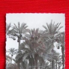 Postales: ELCHE - ALICANTE. Lote 17928816