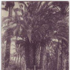 Postales: ELCHE (ALICANTE): PALMERA DEL CAPELLÁN CASTAÑOS. FOTOTIPIA THOMAS. NO CIRCULADA (AÑOS 20). Lote 25942502