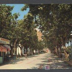 Postales: OLIVA. VALENCIA. *AVENIDA JOSÉ ANTONIO* ED. A. SUBIRATS C. Nº 14. ESCRITA. Lote 143153374