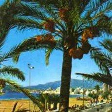Postales: BENIDORM (ALICANTE). Lote 24362106