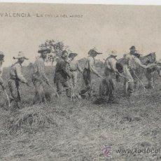 Postales: VALENCIA. LA TRILLA DEL ARROZ. AÑOS 1910. . Lote 27283759