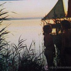 Postales: VALENCIA-CANAL DE LA ALBUFERA-70'. Lote 26290805