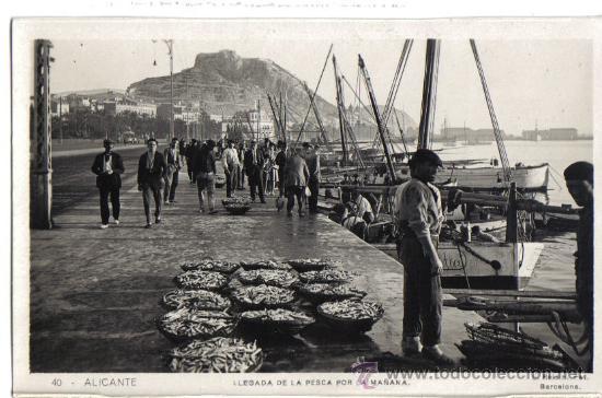 ALICANTE LLEGADA DE LA PESCA POR LA MAÑANA (Postales - España - Comunidad Valenciana Antigua (hasta 1939))