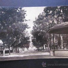 Postales: UTIEL - POSTAL FOTOGRAFICA - PASEO DE LAS DELICIAS. Lote 28873773