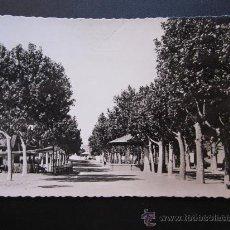 Postales: UTIEL - POSTAL FOTOGRAFICA - PASEO DE LA GLORIETA. Lote 28873787