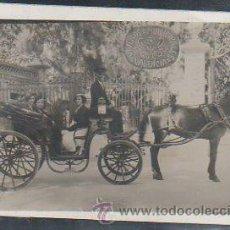 Postales: TARJETA POSTAL FOTOGRAFICA DE VALENCIA - VIVEROS MUNICIPALES.. Lote 31890329