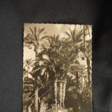 Postales: ELCHE (ALICANTE) - HUERTO DEL CURA - PALMERA IMPERIAL - . Lote 32687260