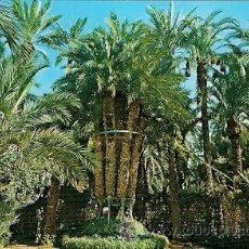 Postales: ELCHE- HUERTO DEL CURA, PALMERA IMPERIAL. Lote 35141986