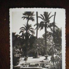 Postales: ELCHE-PARQUE MUNICIPAL. Lote 36387549
