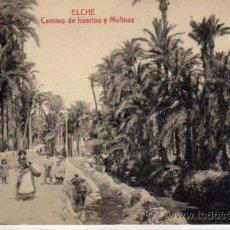 Postales: POSTAL DE ELCHE,CAMINO DE HUERTOS Y MOLINOS. Lote 36594257
