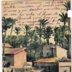Postales: ELCHE. PAISAJE. 1035 BAZA LÓPEZ. FOT HAUSER Y MENET. CIRCULADA MAYO 1902. REVERSO SIN DIVIDIR.. Lote 36659669