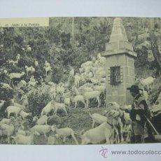 Postales: BENICASIM - DESIERTO DE LAS PALMAS - LICOR CARMELITANO - JUNTO A LA FUENTE. Lote 37155161